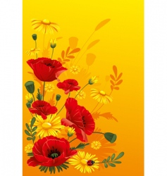 poppies and daisies vector image vector image