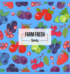 farm fresh banner with ripe berries vector image