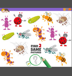 Find two same insect characters game for kids vector
