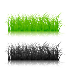 green and black silhouette grass isolated vector image