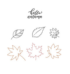 linear doodle hello autumn set linear leaves set vector image
