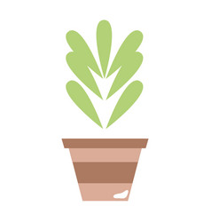 Plant with leaves inside flowerpot design vector