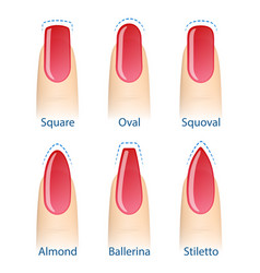 Set of nails shapes vector