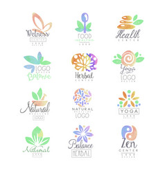 welness zen yoga herbal center healthy food vector image