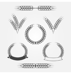 Wheat or rye icons set vector