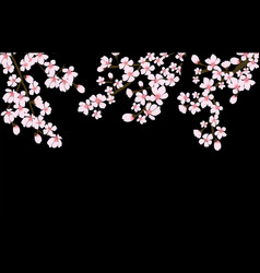 Abstract floral sakura flower japanese natural vector