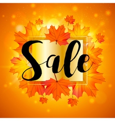 Autumn sale design template with maple leaves vector image
