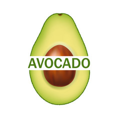 Avocado isolated and white background with text vector