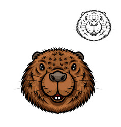 beaver animal head isolated cartoon icon vector image