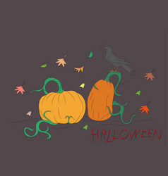 halloween pumpkin drawing color vector image
