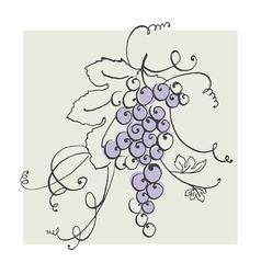 Hand drawn of blue grape pastel color vector