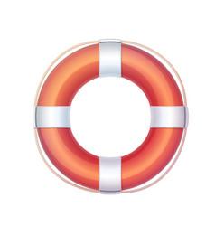 Lifebuoy life buoy icon vector