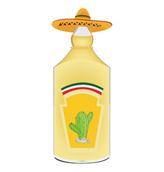 Tequila bottle vector image