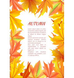 autumn background with frame made of leaves vector image