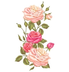 Floral element with vintage roses Decorative vector image vector image