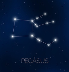 Pegasus constellation in night sky vector image vector image
