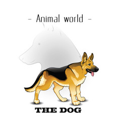 Animal world the dog german shepherd background ve vector