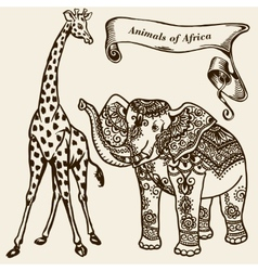 animals of Africa vector image