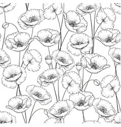 Pattern of poppy vector