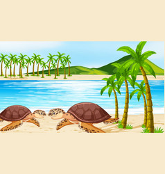 scene with two sea turtles on beach vector image
