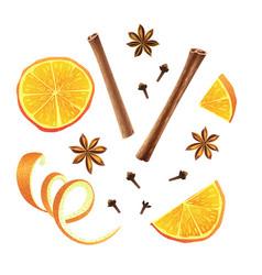 Set of orange star anise cloves and cinnamon vector