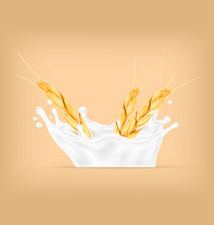 wheat and milk splash vector image