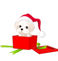 puppy gift vector image vector image