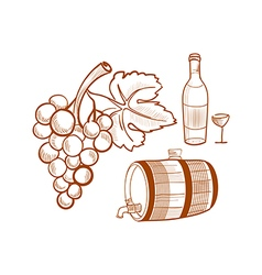 hand drawn set with wine and grapes vector image