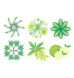 A Set of Isometric Trees and Plants vector image vector image
