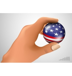 American flag with the ball vector image