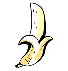 banana sketch on white background vector image