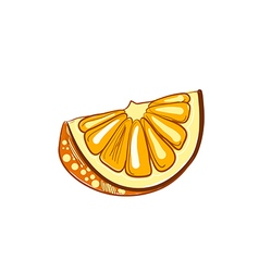 hand drawn slice of orange vector image