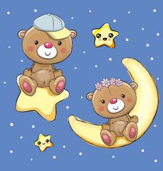 Lovers teddy bears on a moon and star vector