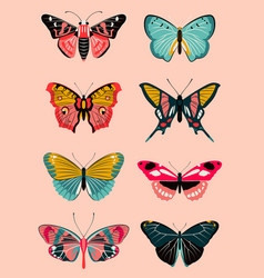 Realistic butterfly and moth collection vector