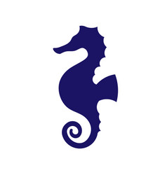 sea horse creative vector image