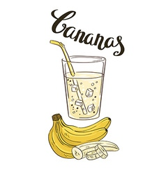 Banana milkshake in a glass glass with slices of vector