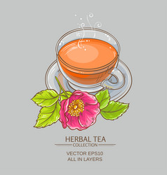 cup of dog rose tea vector image vector image