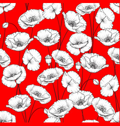 pattern of poppy vector image vector image