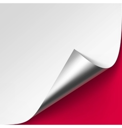 Curled Silver corner of paper on Background vector image vector image