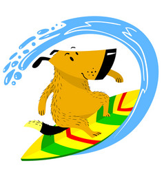 dog on the surfboard the pet is engaged in vector image