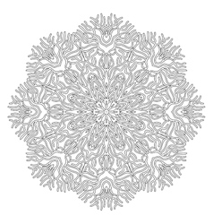 Graphic coral circle ornament vector image
