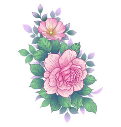 hand drawn floral bunch with pink roses and leaves vector image