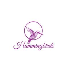 Hummingbird drawing logo design vector