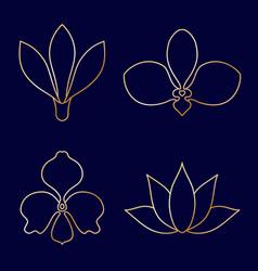 Set of flower line art on blue background vector