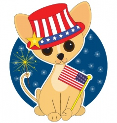 chihuahua america vector image
