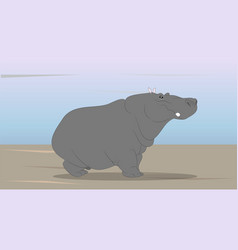 gray hippo stand on nature vector image