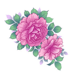 Hand drawn floral arrangement with pink roses vector