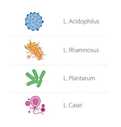 Healthy intestinal bacteria icons medical vector