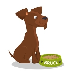 Puppy bruce stiting eat food vector