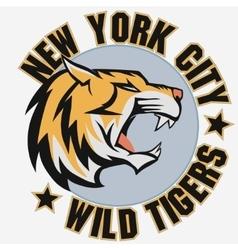 Angry Tiger Sport team emblem vector image